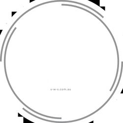 SWS Merch Logo